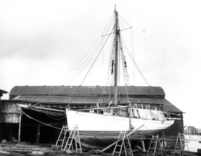 sea-breeze-survey